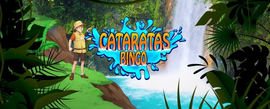 Bingo Cataratas
